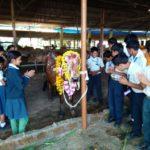 Gopasthami, asharamji bapu, ssAB Gurukul bhopal, gurukul bhopal, gurukul, hindu school